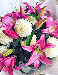 BIG NEWS from Blooms of Noosa
